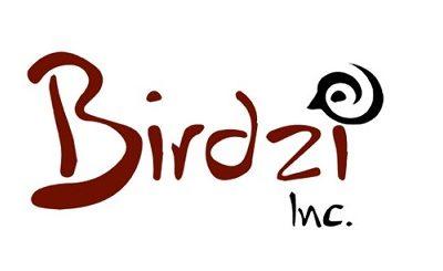 Initial Close of a Series A Funding of Birdzi